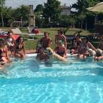 Foto di gruppo cani in piscina Hotel Virginia