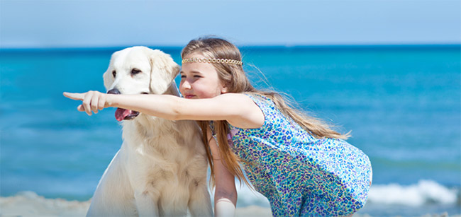 Dog Sitter Virginia Beach