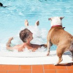Hotel Pet Friendly con piscina Romagna
