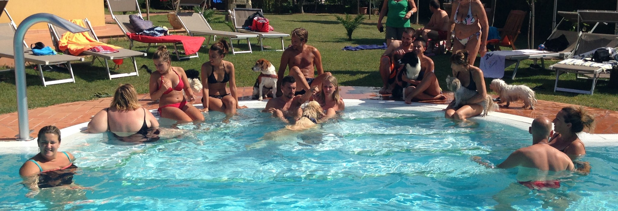 Hotel animali ammessi in piscina