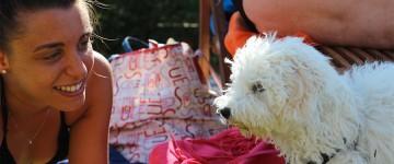 Hotel 3 stelle Rimini per cani