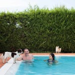Hotel Virginia piscina per cani