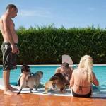 Hotel Rimini con servizi animali