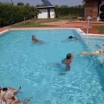 Offerte vacanze per cani animali