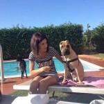 Offerte Hotel per cani Rimini