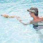 Vacanza al mare con il cane Rimini