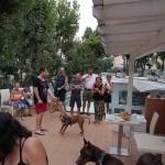 Hotel per cani Rimini 3 stelle